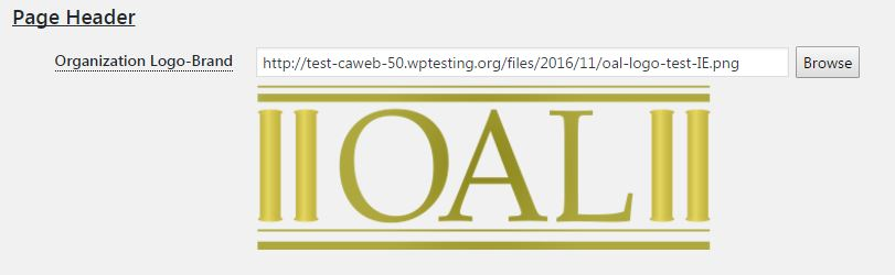 Image of the logo settings on the CAWeb Options page