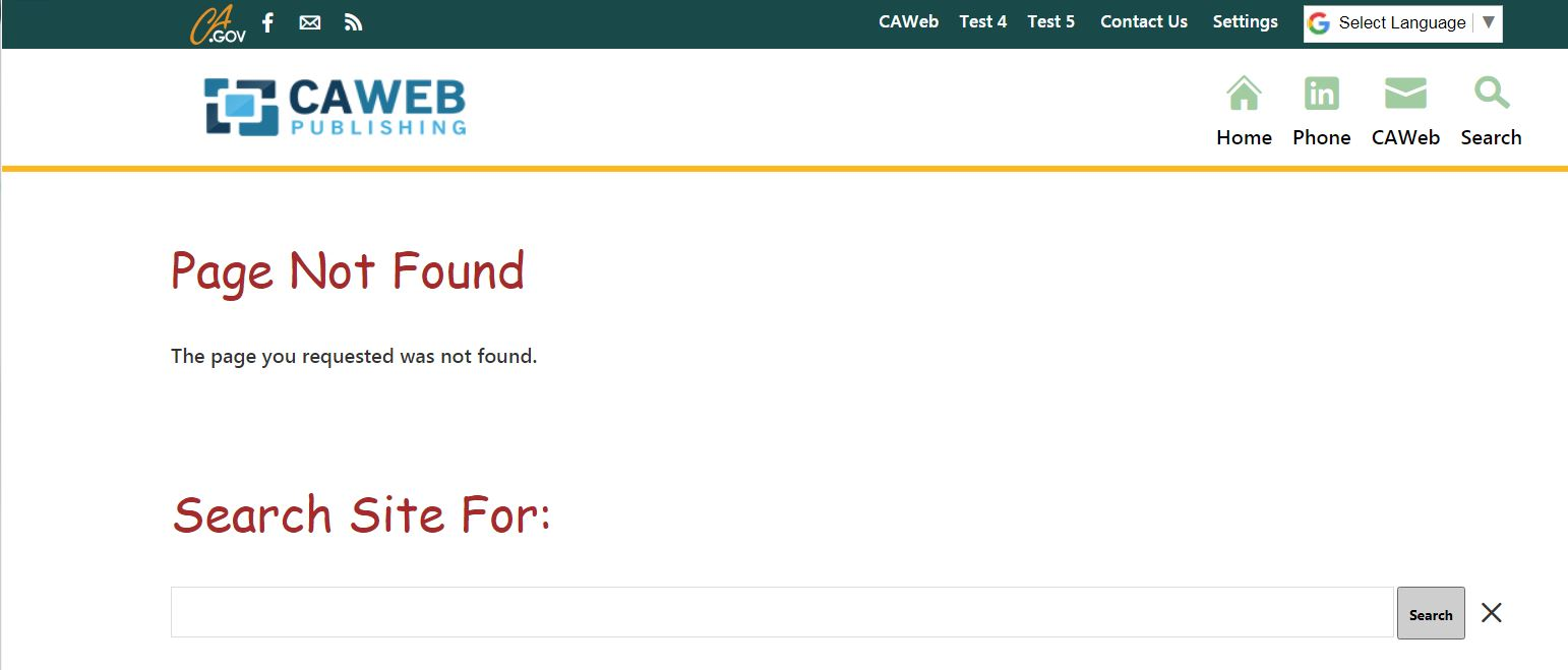 Search Box on 404 Page